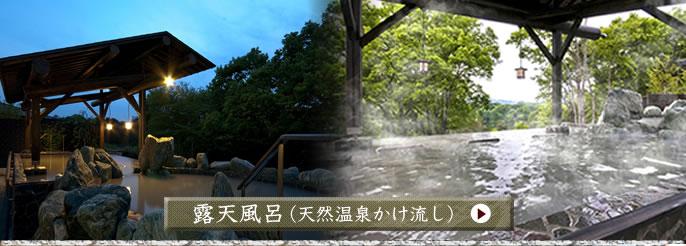 露天風呂(天然温泉かけ流し)